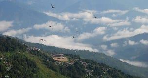 Darjeeling vanaf de bovenkant stock foto