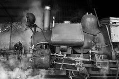 Darjeelingen Toy Train Arkivbild