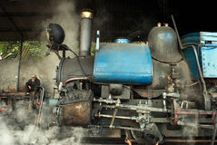 Darjeelingen Toy Train Royaltyfri Bild