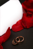 Dark. Two wedding rings and red petals Stock Photography
