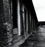 In dark Stock Foto