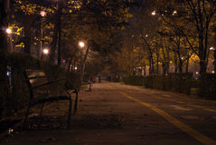 Dark alley. Alley by night with fallen leaves Royalty Free Stock Photography