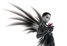 Dark angel Stock Photography