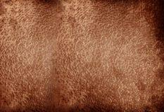 Dark animal skin Stock Photo