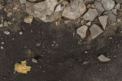 Dark autumn damp ground with pieces of plaster. Background Royalty Free Stock Photos