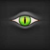 Dark Background with animal eye. Vector Stock Image