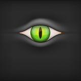 Dark Background with animal eye. Vector Stock Image