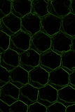 Dark background with honeycomb pattern. Creepy dark background with honeycomb pattern Stock Photo