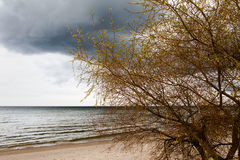 Dark baltic clouds. Stock Photo