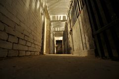 Dark basement. Dark scary bricked basement in old house Stock Image