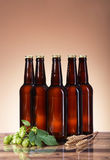 The dark beer and brewing ingredients Royalty Free Stock Image