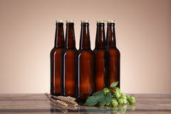 The dark beer and brewing ingredients Royalty Free Stock Images