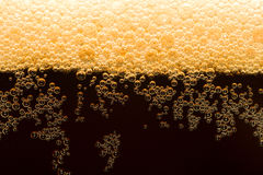 Dark beer with foam Royalty Free Stock Photos