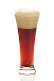 Dark beer with the foam in a tall glass Stock Photography
