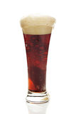 Dark beer with the foam in a tall glass Stock Photos