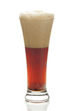 Dark beer with the foam in a tall glass Stock Image