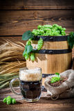Dark beer straight from the barrel Stock Images