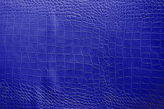Dark blue color Texture pattern abstract background can be use as wall paper screen saver brochure cover page or for presentations. Background or articles Royalty Free Stock Photography