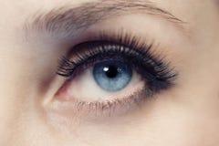 Dark blue eye close up Stock Photo