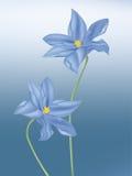 Dark blue flower stock illustration