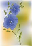 Dark blue flowers vector illustration