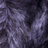 Dark blue fur texture Royalty Free Stock Images