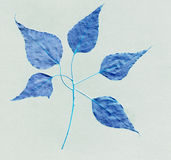 Dark blue leaf pattern texture background Royalty Free Stock Photos