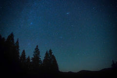 Dark blue night sky above the mistery forest Stock Images