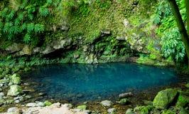 Dark Blue Pond royalty free stock image