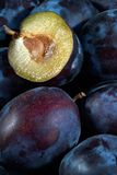 Dark blue ripe fleshy plums royalty free stock photography