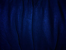 Dark, blue background. Stock Photos