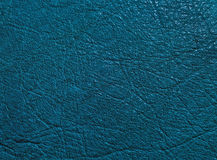 Dark blue skin texture Royalty Free Stock Images