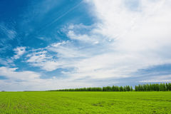 Dark blue sky over the plain Stock Photo