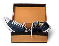 Dark blue sports shoes abandoned in a cardboard box Stock Image