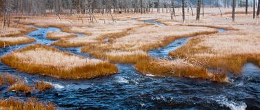 Dark Blue Stream and Frost Covered Grass Royalty Free Stock Photos