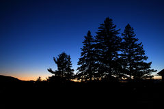 Dark blue sunset with pine cone trees silouhette. A late sunset blue to orange color with hills and pine cone trees shadows in canada Royalty Free Stock Photography