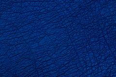 Dark blue textured leather background. stock image