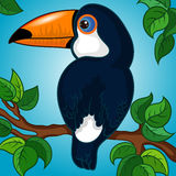 Dark Blue Toucan Character Royalty Free Stock Photos