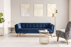 A dark blue velvet settee against a gray wall with modern paintings in an empty living room interior. Real photo. Concept stock image