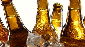 Dark bottles twist in pieces of clear ice. White background. Close up. Beer Festival, a lot of cold beer, dark bottles spinning in pieces of clear ice. White stock video footage