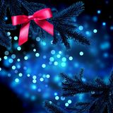The dark branches of the Christmas tre Royalty Free Stock Photography