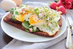 Dark bread with poached eggs Stock Photos