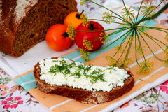 Dark bread slice with cottage cheese. Slice of dark bread with cottage cheese Stock Photo