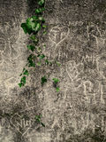 Dark brick wall with graffiti with green flower Royalty Free Stock Image