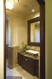 Dark Brown Bathroom Unit Royalty Free Stock Photos