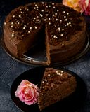 Dark brown chocolate cake with decoration Royalty Free Stock Photography