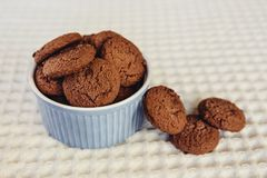Dark brown chocolate chip cookies in little blue bowl. Sweet food Stock Photos