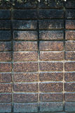 Dark brown laterite stone wall Stock Images