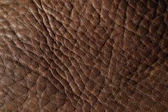 Dark Brown Leather Stock Photo