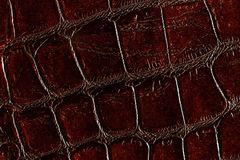 Dark brown leather texture Royalty Free Stock Image